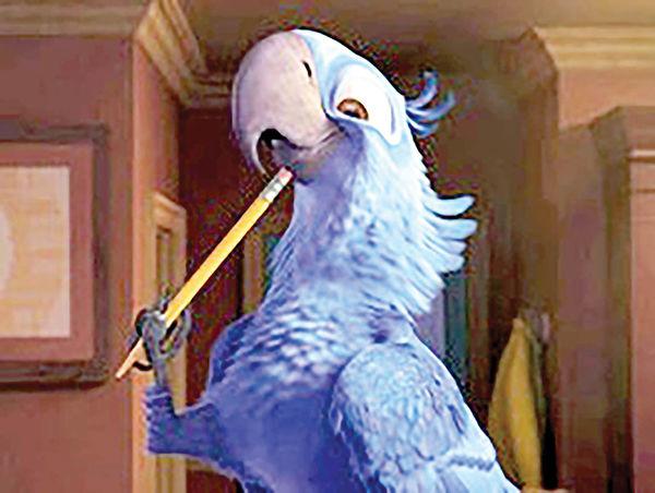 انقراض پرنده کارتونی در دنیای واقعی