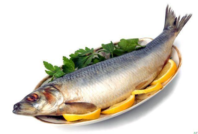 گرانی عجیب و غریب در بازار ماهی/ ماهی به سفره شب عید میرسد؟