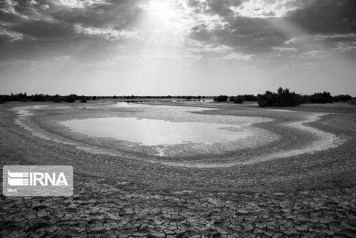 آمار وحشتناک خشکسالی در ایران