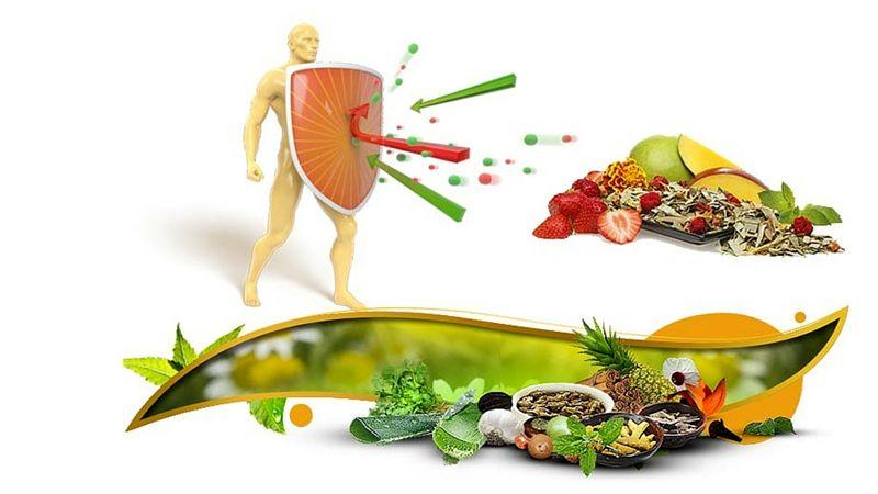 تقویت سیستم ایمنی با موادغذایی