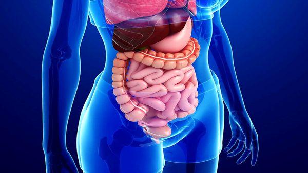 ماده غذایی معجزهگر برای درمان اختلالات گوارشی
