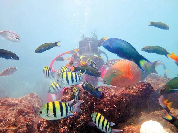 چابهار؛ فرصتی برای جذب گردشگران دریایی