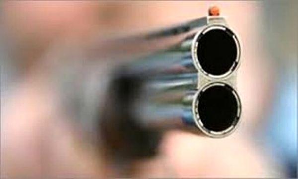 قاتل شهروندان کنگانی شناسایی شد