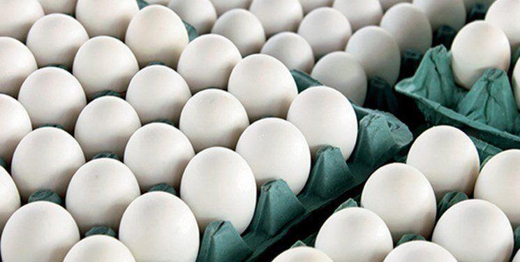 قیمت هر شانه تخم مرغ از ۵۵ هزار تومان گذر کرد