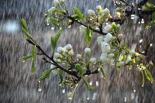 آغاز بارش برف و باران از فردا در نقاط مختلف کشور
