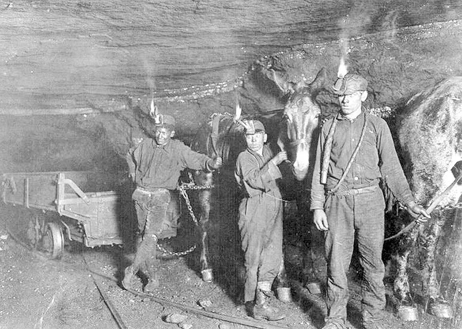 اتحادیه معدنچیان آمریکا