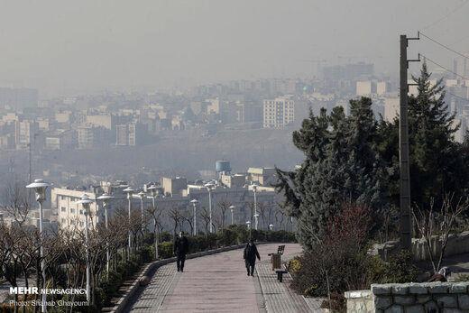 وقوع ۱۱ مرگ زودرس روزانه در تهران به دلیل آلودگی هوا