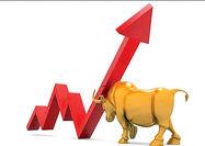 طول عمر بازارهای «گاوی»