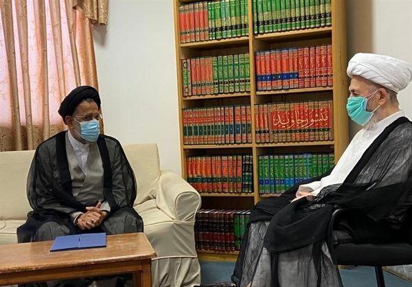 وزیر اطلاعات با آیتالله سبحانی دیدار کرد