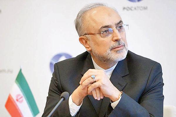 صالحی: خرابکاری در نطنز توسط کشورهای عضو محکوم شود