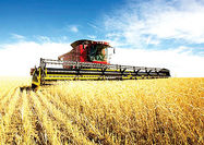 دولت از تولیدکنندگان ماشینآلات کشاورزی حمایت کند