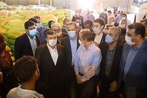 خبر خوش وزیر صمت از ترخیص به موقع کالاها