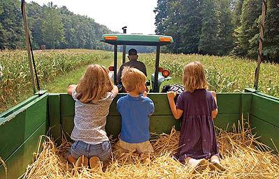 5 راه برای پول درآوردن از گردشگری کشاورزی