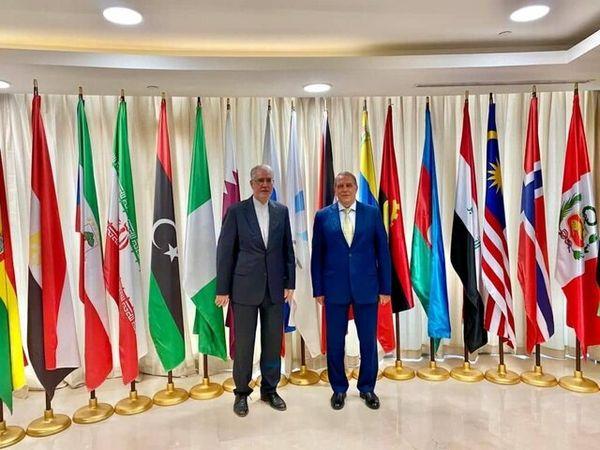 جزئیات دیدار و رایزنی سفیر ایران با دبیرکل اوپک گازی
