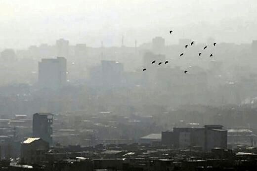 استقرار آمبولانس در 7 شهر به دلیل آلودگی هوا