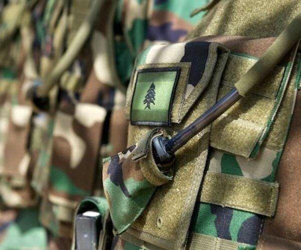 بازداشت یگ گروه وابسته به داعش در لبنان