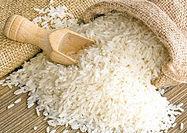 واردات برنج ۵۰ درصد کاهش یافت