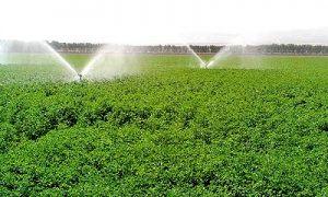 تاثیر تجارت آب مجازی  در امنیت غذایی