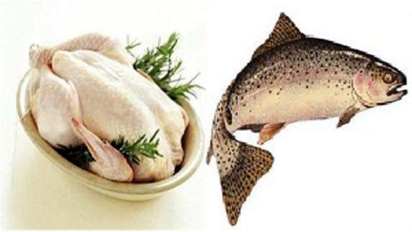 آخرین قیمت مرغ/ ماهی صددرصد گران شد