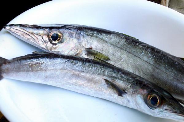 داشتن چشمانی زیبا با اجتناب از مصرف این مواد غذایی/ منتشر نشود