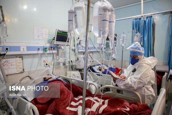 اعلام آمار فوتیهای جدید کرونا در کشور /بستری شدن ۲۱۰۲ بیمار دیگر