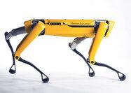 فروش روبات امدادی برای اولین بار