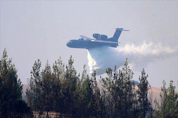 یک هواپیمای نظامی سقوط کرد/ تمام سرنشینان جان باختند