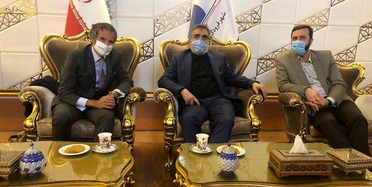 گروسی مدیرکل آژانس بین المللی انرژی اتمی وارد تهران شد