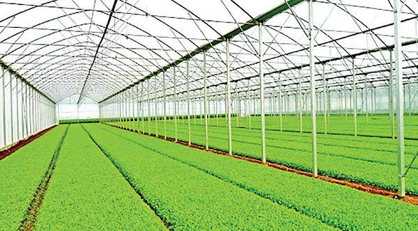 رفع موانع قانونی اولین گام توسعه شهرکهای کشاورزی
