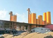 لزوم تنوع تولید سیمان در ایران