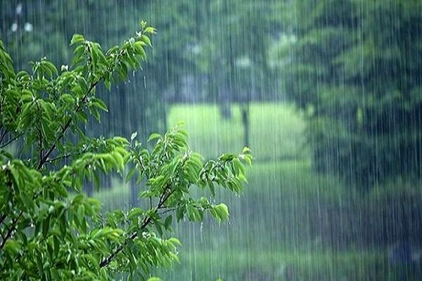 پیشبینی رگبار پراکنده باران و تندباد در تهران