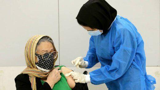 واکسن تقلبی کرونا دامی برای یک کلاهبردار