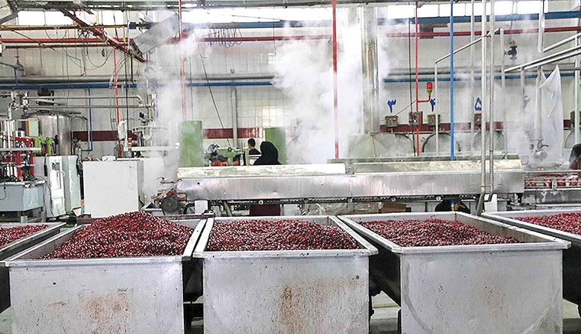 کارنامه صنعت غذا در آخر پاییز