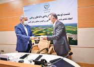 امضای اولین تفاهمنامه کشت قراردادی دانههای روغنی با کارخانههای روغنکشی