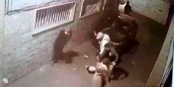 واکنش پلیس به انتشارفیلم زورگیری از دو زن
