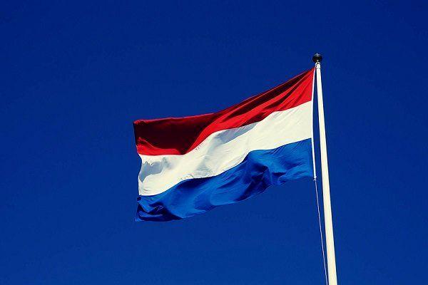دولت هلند استعفا میکند