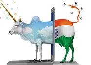 پشتصحنه رشد  استارتآپهای هندی
