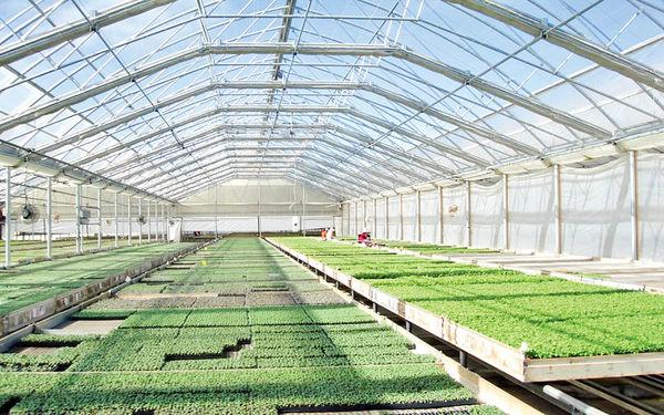 واگذاری شهرکهای کشاورزی به سرمایهگذاران جدید