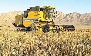 مدیریت یکپارچه؛ حلقه مفقوده کشاورزی