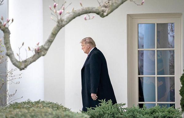 اثر سقوط نفت بـر شانس ترامپ