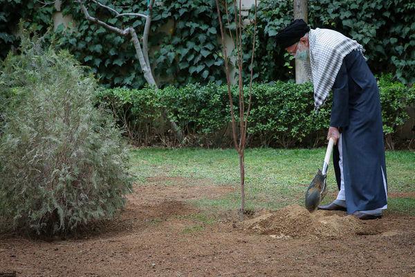 تصویر رهبر انقلاب در حال درختکاری+عکس