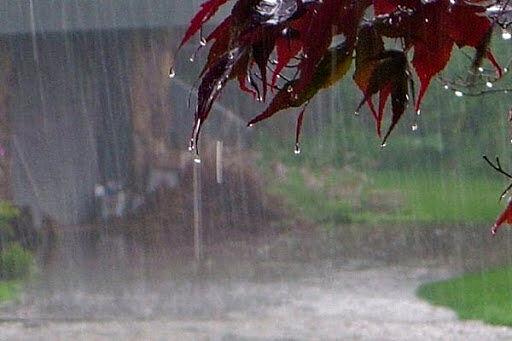 پیشبینی بارشهای پراکنده در ۸ استان کشور