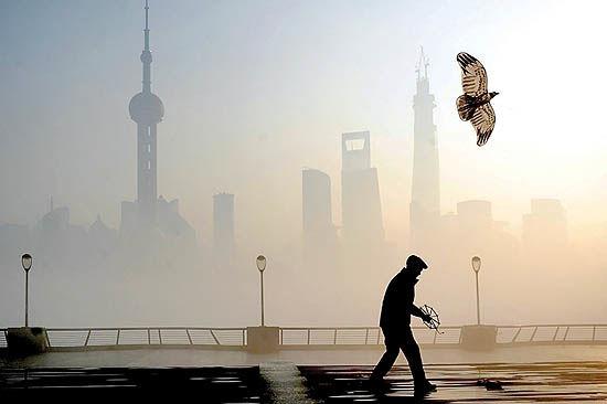 پازل زندگی در شهرهای آلوده