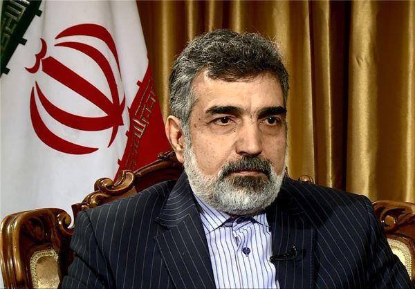 کمالوندی: مدیرکل آژانس هفته آینده به تهران سفر میکند
