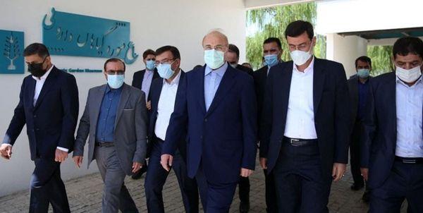 بازدید رئیس مجلس از شهرک دارویی برکت+عکس