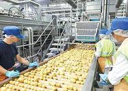 10 غول صنایع غذایی جهان
