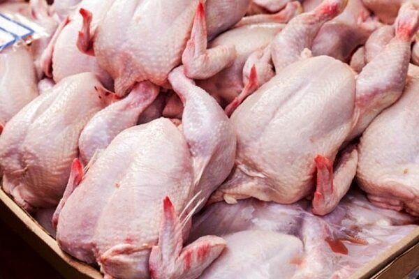 قیمت واقعی مرغ برای مصرف کننده ۳۰ هزار تومان است