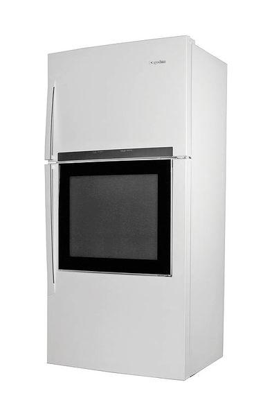 مشاهده محتویات یخچال بدون باز کردن درب