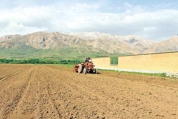 پیامدهای گرانی نهادههای کشاورزی