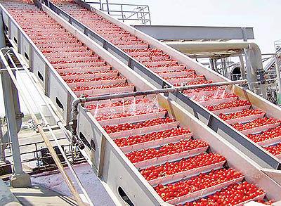 حال و آینده سرمایهگذاری در صنعت غذا